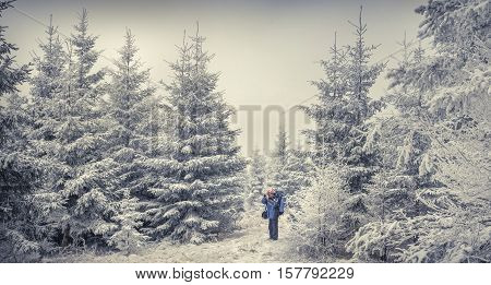 Photographer Takes A Photo In The Winter Woods.