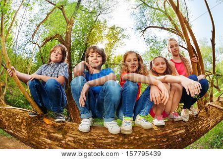 Close-up portrait of five kids sitting in line on trunk of fallen tree in summer forest