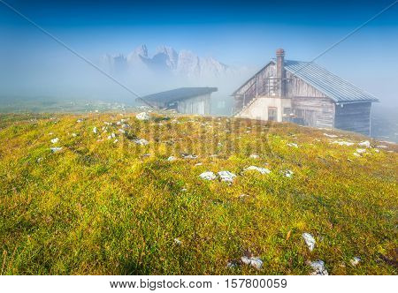 Gruppo Del Cristallo Mountain Range In The Morning Mist