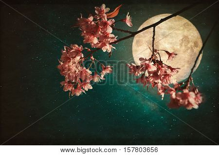 Antique and vintage style photo - Beautiful pink cherry blossom (sakura flowers) in night of skies with full moon and milky way stars.