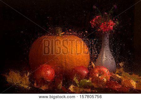 Autumn Still Life / Still life of wet glass