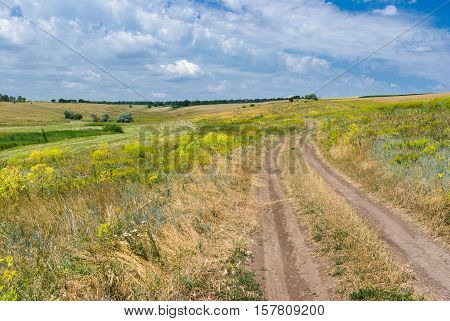 Summer landscape of an earth road in wild Ukrainian prairie .