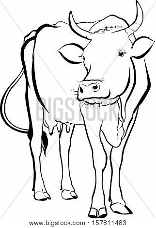 cow. cow farm. cow animal. cow vector silhouette