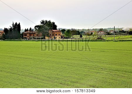Agricultural Field In Europe