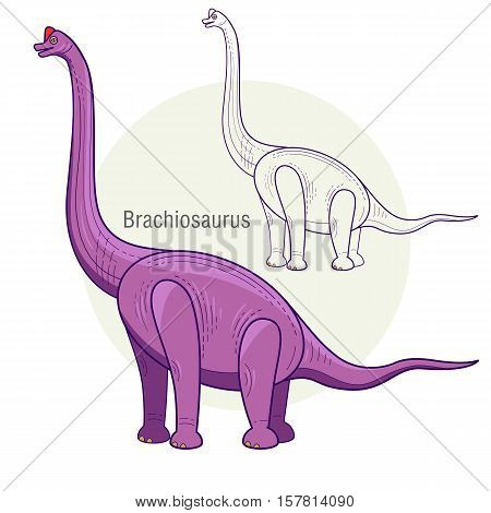 Brachiosaurus. Ancient jurassic reptile, vector illustration cartoon prehistoric dinosaur isolated on white background. Full-color flat images animal and abstract linear.