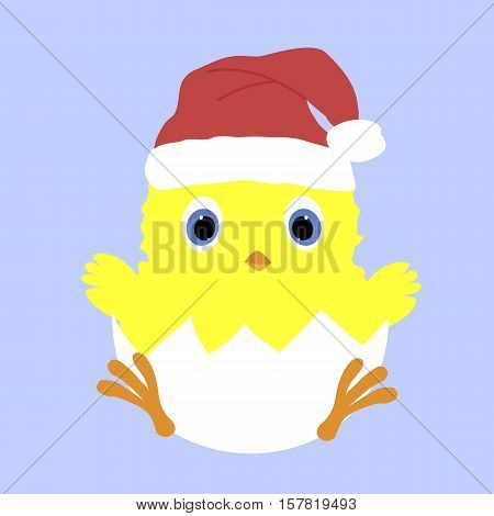 Colored icon baby chicken in the shell and in the Santa hat. Vector illustration. Pattern to decorate or design scrapbook. Baby shower
