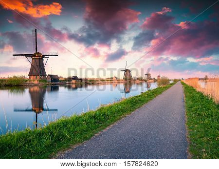 Colorful spring scene in the famous Kinderdijk canals with windmills UNESCO world heritage site. Sunrise in Dutch village Kinderdijk walking path in the park Netherlands Europe.