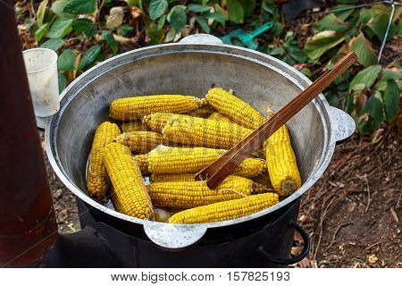 Boiled Corn In Big Cauldron. Street Food