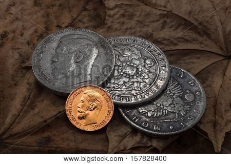 Gold and silver rubles of the Russian Empire of imperial House of Romanovs against the background of dry leaves.