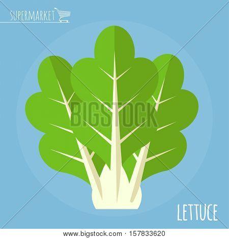 Lettuce.  Long shadow flat design vector icon.