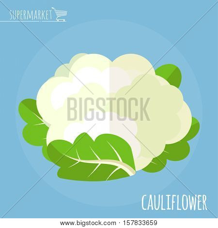 Cauliflower. Long shadow flat design vector icon.