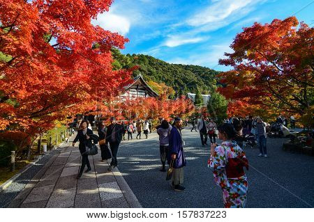 KYOTO, JAPAN - NOVEMBER 16, 2016 - Visitors and foreign tourists enjoy the vibrant colors of fall at Eikan-do Zenrin-ji Temple in Kyoto, Japan