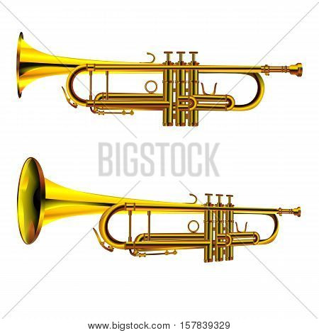 vector illustration isolated object trumpet from two perspectives side and front