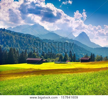 Colorful Summer Morning In The German Alps.