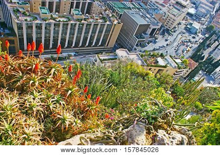 The view from the cliff of Jardin Exotique - Botanical Garden on the roofs and streets of the city Monaco.