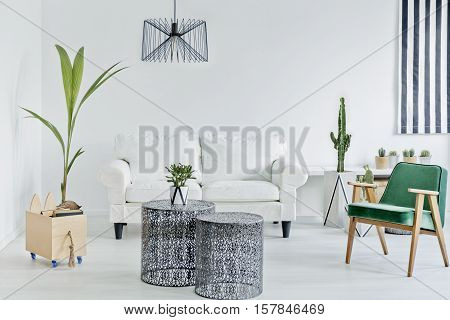 Living Room With Green Armchair