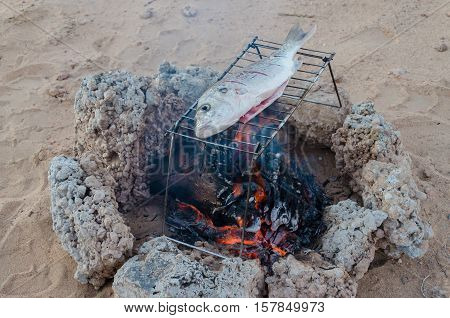 Freshly caught fish being grilled over open campfire out in the Namib Desert of Angola