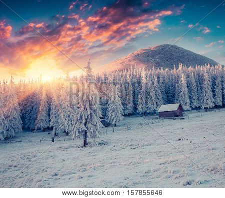 Colorful Winter Sunrise In The Misty Mountans.