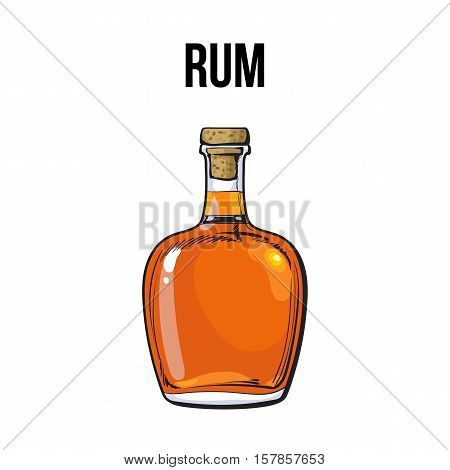 Full Jamaican rum bellied bottle, sketch style vector illustration isolated on white background. Realistic hand drawing of an unlabeled, unopened rum, brandy, whiskey bottle