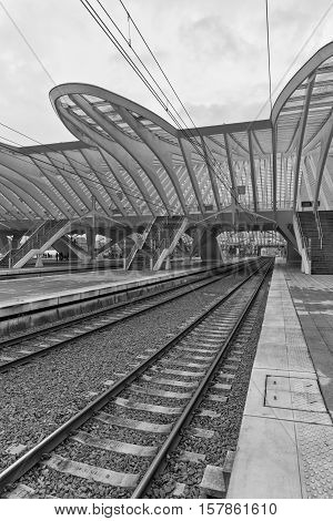 LIEGE BELGIUM - December 2014: Detailed roof of the Liege-Guillemins railway station designed by Santiago Calatrava. Black and white photograph