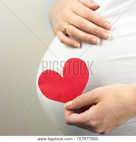 Pregnant woman holding in hand red heart. Unborn baby in the belly of pregnant woman.