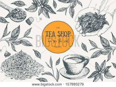 Tea Shop vector illustration. Vector card design with tea. Tea house poster. Vector hand drawn set. Linear graphic