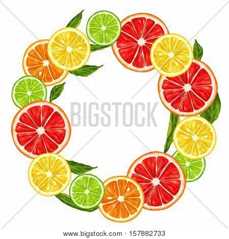 Frame with citrus fruits slices. Mix of lemon lime grapefruit and orange.