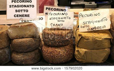 Many Types Of Pecorino Cheese Of The Italian Written The Cheese