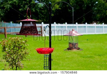 Three birdfeeders hanging outdoors with bird seed and hummingbird sugar water.