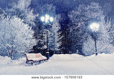 Winter night landscape scene of snow covered bench among snowy winter trees and lights. Winter night landscape of park under winter snowflakes.Winter night- winter snowfall in the deserted winter park