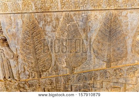 Stone bas-relief of the trees and flowers carved on the stairway facade of the Apadana at the old city Persepolis.