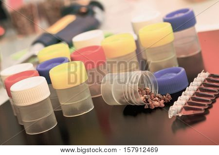PCR tray in microbiological laboratory. Toned Image