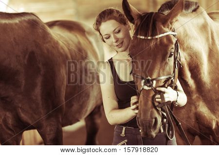 Animal horsemanship concept. Woman hugging brown horse in stable. Natural sunlight sepia
