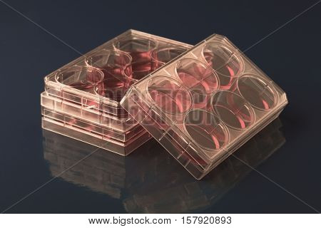 Blood samples in a container for testing diabetes. Toned Image
