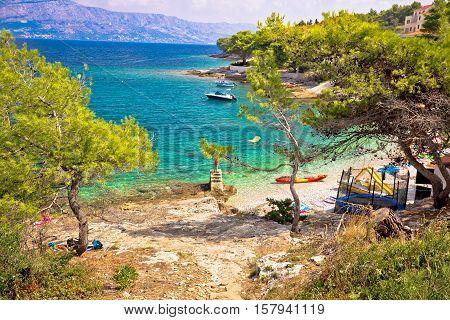 Turquoise beach in pine trees on Brac island Dalmatia Croatia