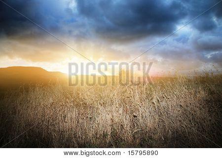 Dramatic steppe landscape at dusk