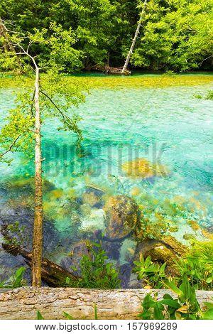 Kamikochi Turquoise Azusa River Water Nature V