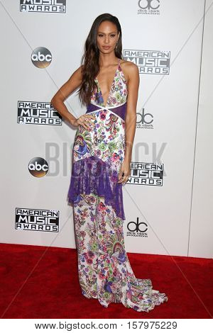 LOS ANGELES - NOV 20:  Joan Smalls at the 2016 American Music Awards at Microsoft Theater on November 20, 2016 in Los Angeles, CA