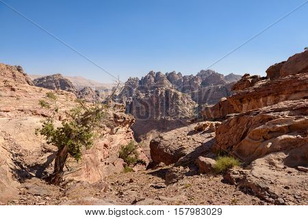 wild landscape of rock mountains in Petra Jordan