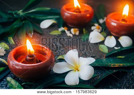 beeswax or Candle light surrounding by dark nature