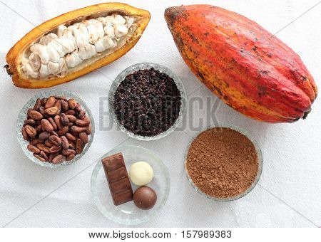 cacao beans,cacao fruit, cacao nibs,cacao powder and chocolate