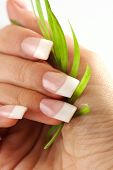 Beautiful hands with French manicure nails poster