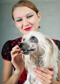 The beautiful girl and chinese crested dog on grey background. Shallow DOF focus on dog poster