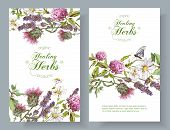 Vector vertical wild flowers and herbs banners. Design for herbal tea, natural cosmetics, honey, health care products, homeopathy, aromatherapy. With place for text poster