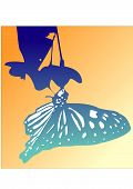 Butterfly Silhouette Nature Insect Summer Flowers Vector poster