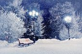 Winter night landscape scene of snow covered bench among snowy winter trees and lights. Winter night landscape of park under winter snowflakes.Winter night- winter snowfall in the deserted winter park poster