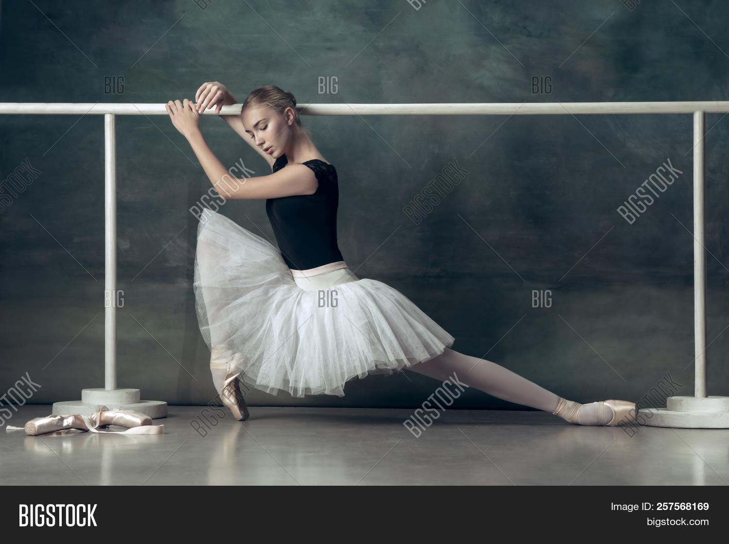 Apologise, but, young teen ballerina something