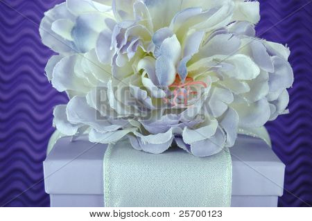 Lavender and Purple Gift