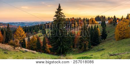 panorama of village outskirts in autumn. lovely landscape in mountains at sunset with gorgeous sky poster