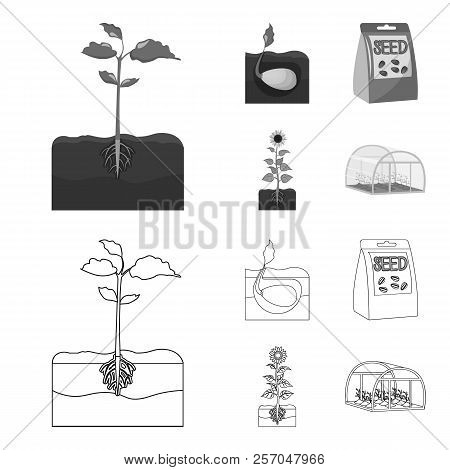 Company, Ecology, And Other Web Icon In Outline, Monochrome Style. Husks, Fines, Garden Icons In Set